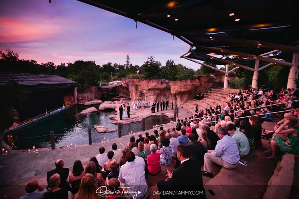 Memphis zoo wedding 042