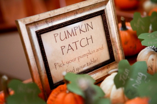pumpkin patch mini pumpkin escort cards