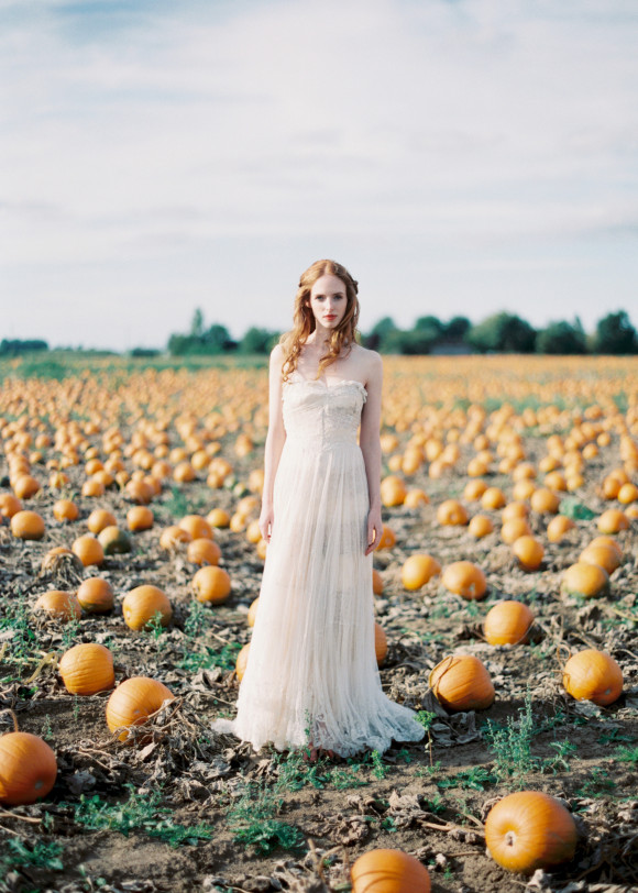 wedding inspiration pumpkin patch fall wedding