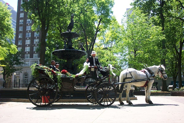 uptown carriages memphis proposal on carriage