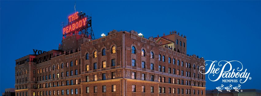 memphis wedding venue - the peabody hotel memphis